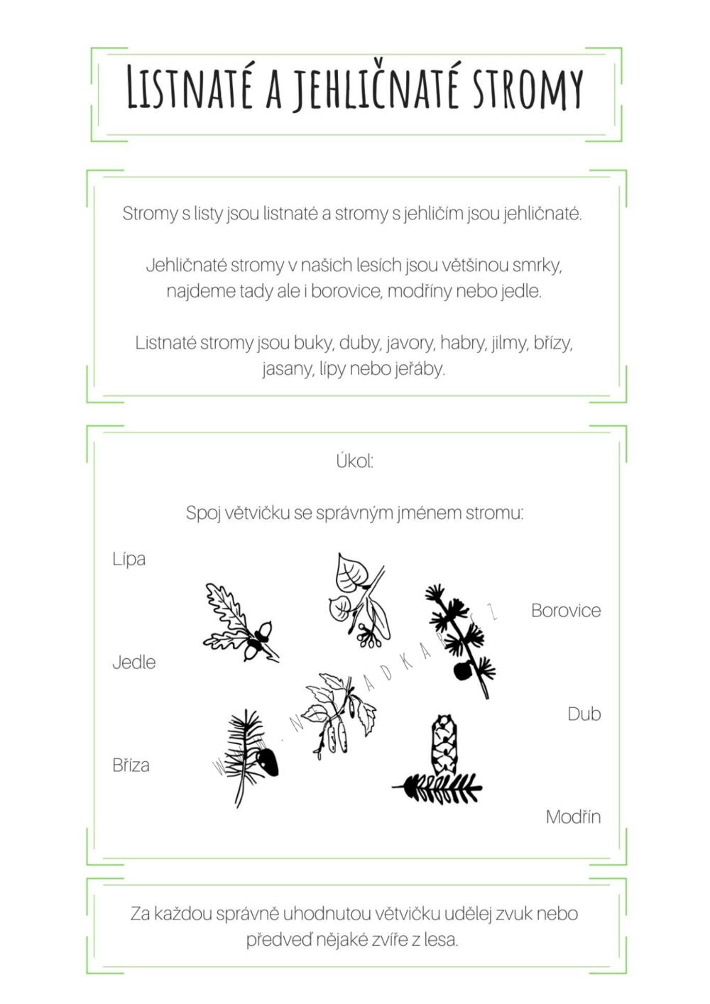 ukázka úkolu z nesladkého odpočítávadla Nesladkář les 24 dní - listnaté a jehličnaté stromy - povídání, úkol a obrázek