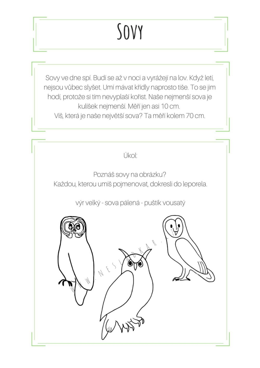 ukázka úkolu z nesladkého odpočítávadla Nesladkář les 24 dní - sovy - povídání, úkol a obrázek